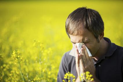 Allergy Epidemic?