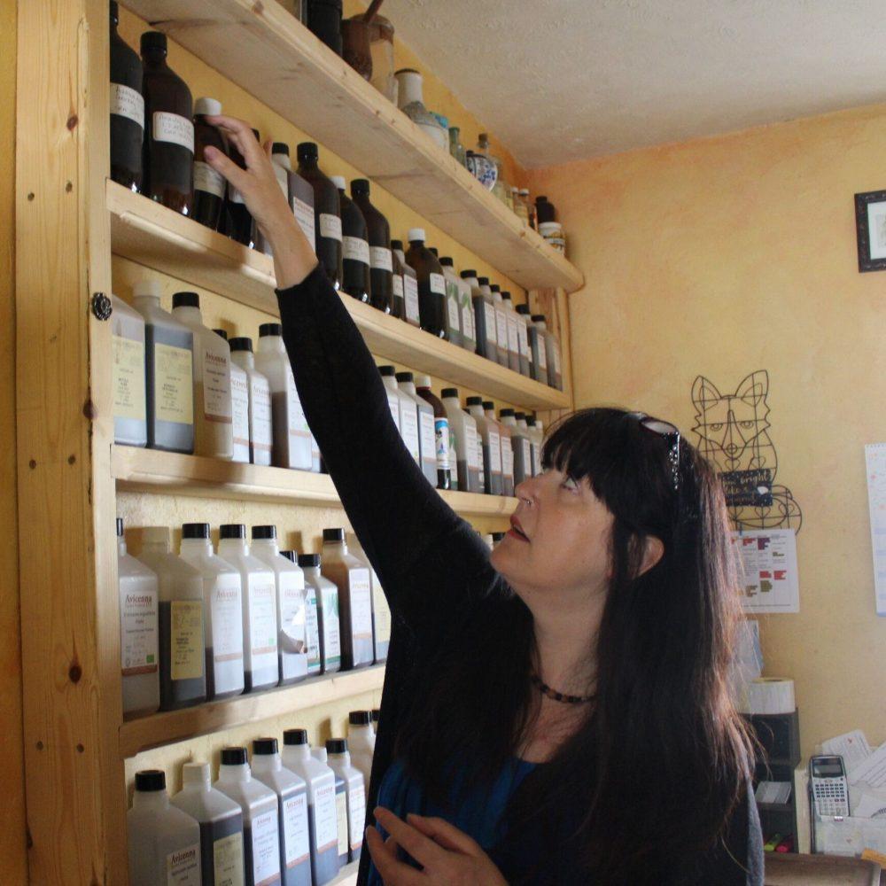 Medical Herbalism Demystified